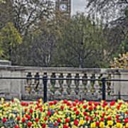 From Buckingham To Big Ben Art Print
