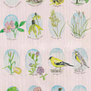 From The Fields And Fencelines Print by Hollie Reilly