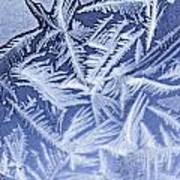 Frost In Blue Art Print