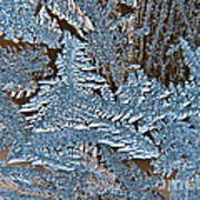 Frost Macro Art Print