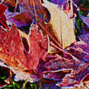 Frosted Leaves #2 - Painted Art Print