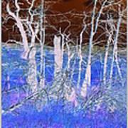 Frosty Forest Art Print