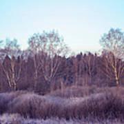 Frosty Purple Morning In Russia Art Print