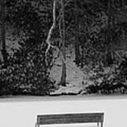 Frozen Bench Art Print