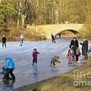 Frozen Lake Krefeld Germany Art Print by David Davies