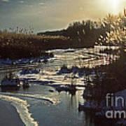 Frozen Marsh Art Print