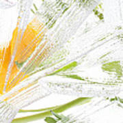 Frozen Spring Vii Art Print