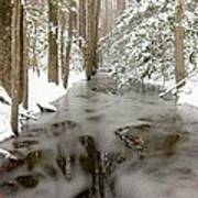 Frozen Stream Art Print