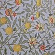 Fruit Design 1866 Art Print