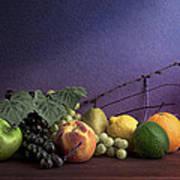 Fruit In Still Life Print by Tom Mc Nemar