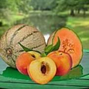 Fruits-garden Art Print