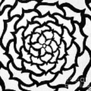 Full Bloom I I Art Print