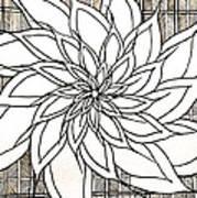 Full Bloom Iv  Art Print