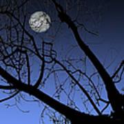 Full Moon And Black Winter Tree Art Print