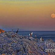 Full Moon Gathering Of Capricorn Art Print