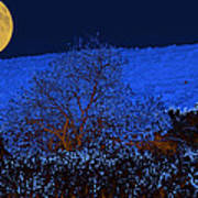 Full Moon Night Art Print