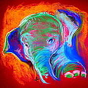 Funky Baby Elephant Blue Art Print