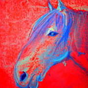 Funky Handsome Horse Blue Art Print