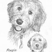 Furry Dog Friend Pencil Portrait Art Print