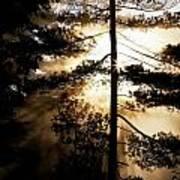 Fv5423, Perry Mastrovito Sunrise Though Art Print