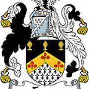 Fyan Coat Of Arms Irish Art Print