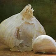 G Is For Garlic Art Print
