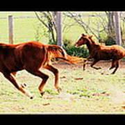 Galloping Horses Art Print by Arie Arik Chen