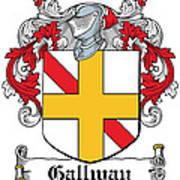Gallway Coat Of Arms Irish Art Print