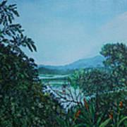 Gamboa Art Print