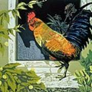 Gamecock And Hen Print by Carol Walklin