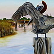 Gar Lake Pelican 2 Art Print