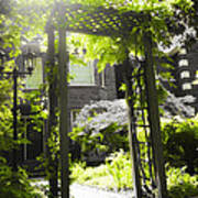 Garden Arbor In Sunlight Art Print by Elena Elisseeva