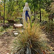 Garden At Mother Cabrini Art Print