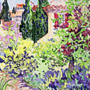 Garden At Vaison Art Print