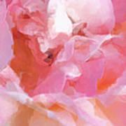 Garden Ballet Art Print