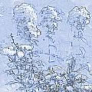 Garden Blue Print by Diana  Tyson