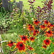 Garden Glimpse Art Print