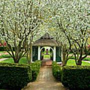Garden In Full Bloom Art Print