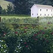 Garden In The Back Art Print