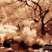 Garden Lily Pond Art Print