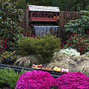 Garden Miniature Train Art Print