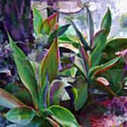 Garden Of Agave Art Print