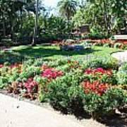 Garden Park Art Print