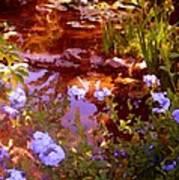 Garden Pond Art Print