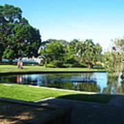 Sydney Botanical Garden Lake Art Print