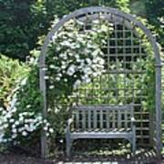 Garden Respite Art Print
