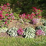 Garden Splender Art Print