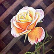 Garden Tea Rose Art Print