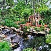 Garden Waterfall And Pond Art Print