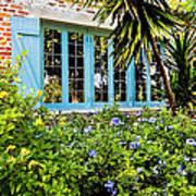 Garden Window Db Art Print